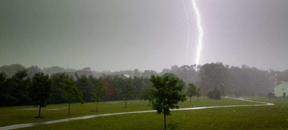 Detroit Lightning Protection For Trees