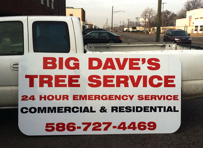 Big Dave's Tree Service employee trimming a tree
